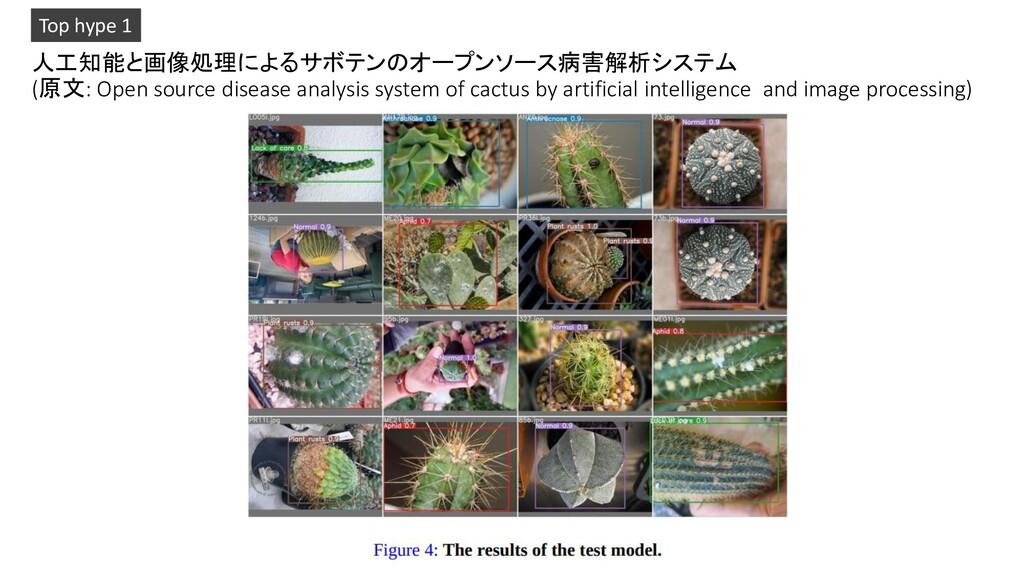 人工知能と画像処理によるサボテンのオープンソース病害解析システム (原文: Open sour...