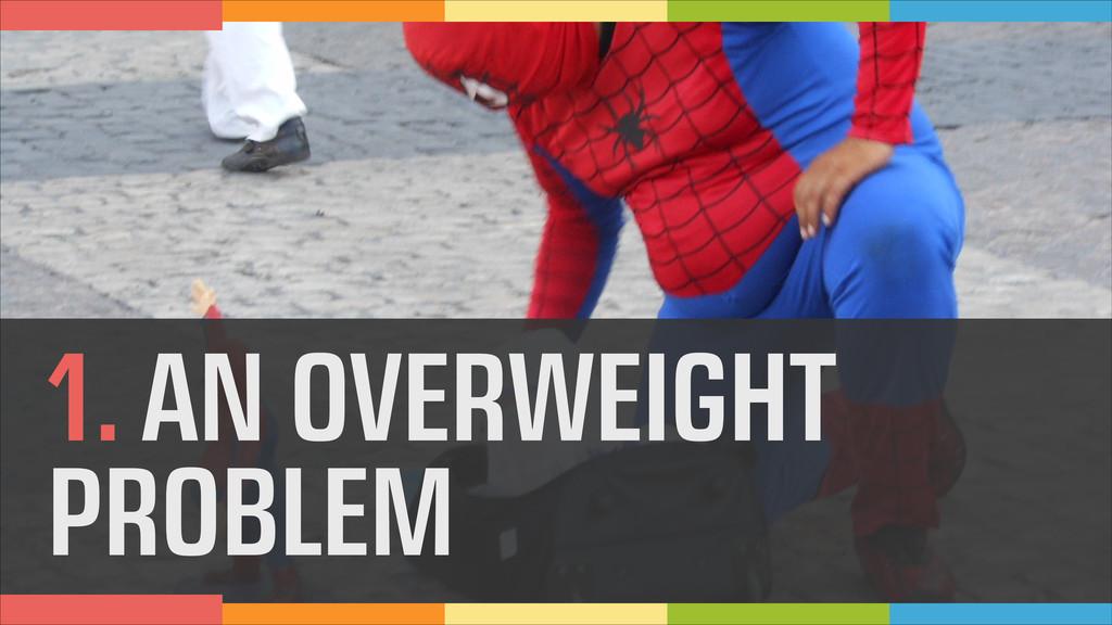 1. AN OVERWEIGHT PROBLEM