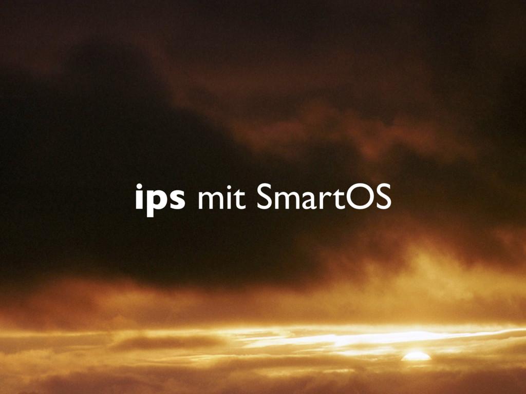 ips mit SmartOS