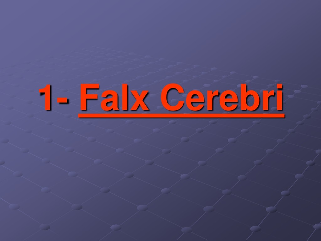 1- Falx Cerebri