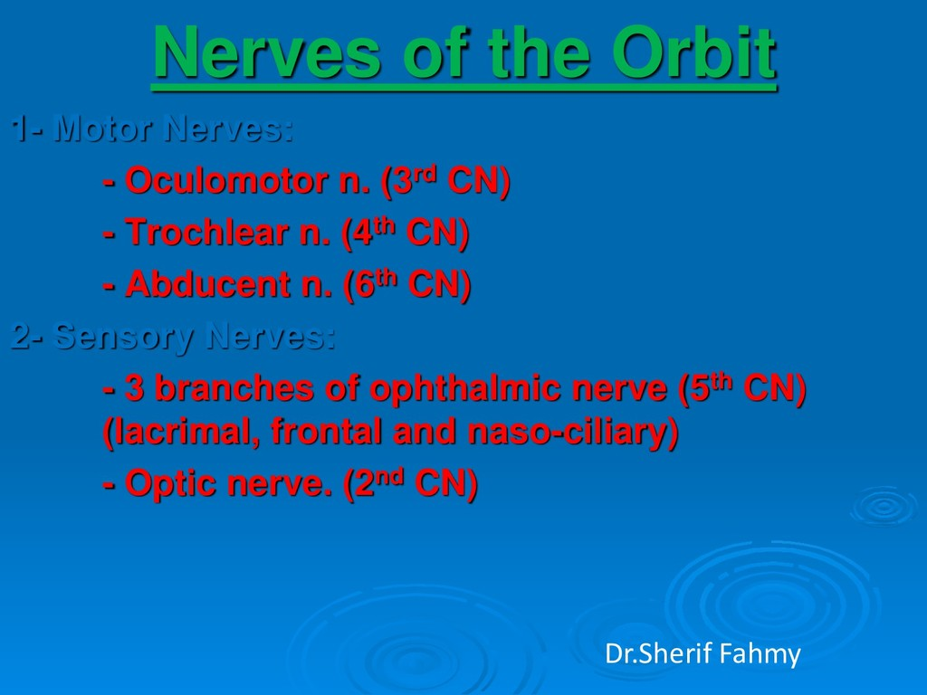 Nerves of the Orbit 1- Motor Nerves: - Oculomot...