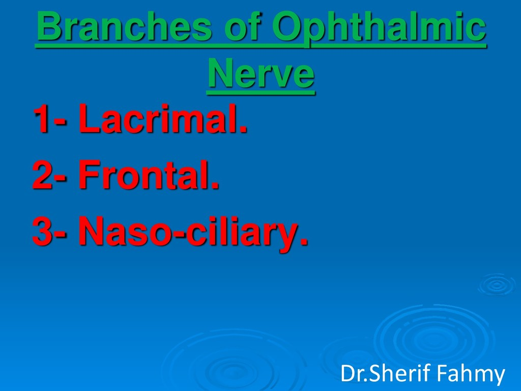 Branches of Ophthalmic Nerve 1- Lacrimal. 2- Fr...