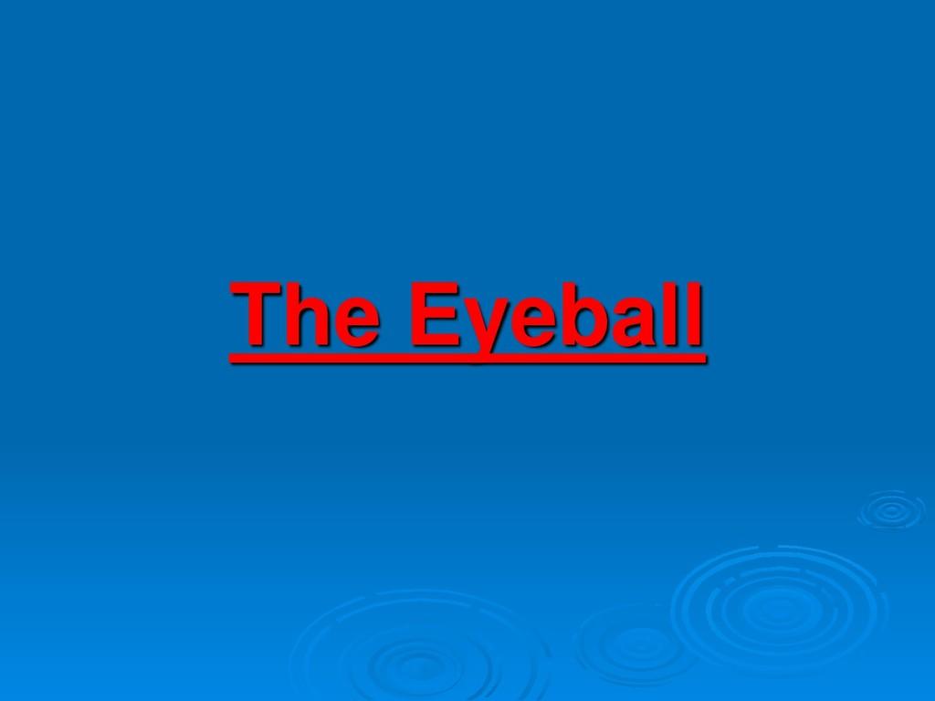 The Eyeball
