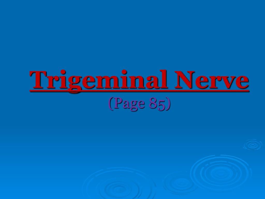 Trigeminal Nerve (Page 85)