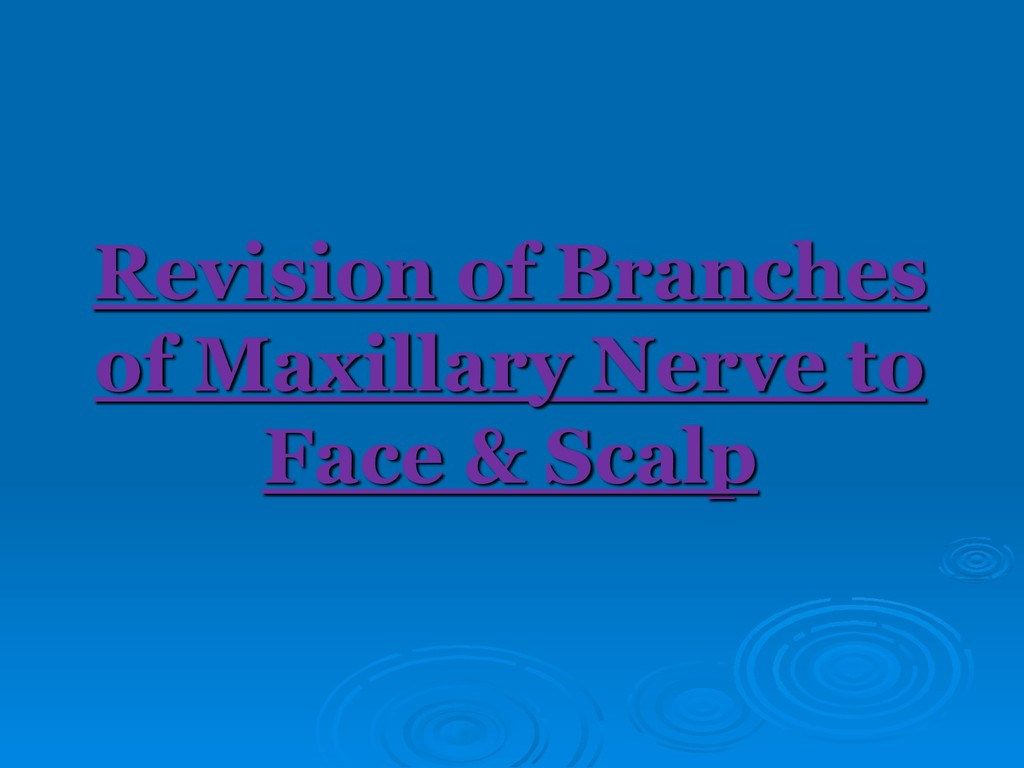 Revision of Branches of Maxillary Nerve to Face...