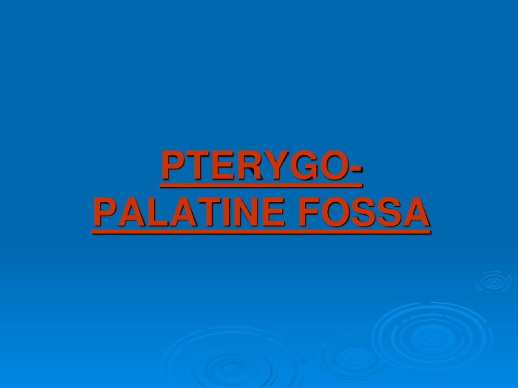 PTERYGO- PALATINE FOSSA