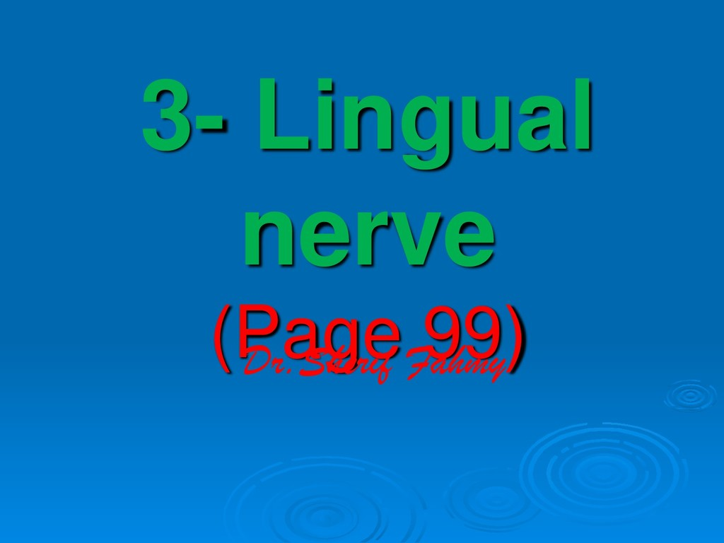 3- Lingual nerve (Page 99) Dr.Sherif Fahmy