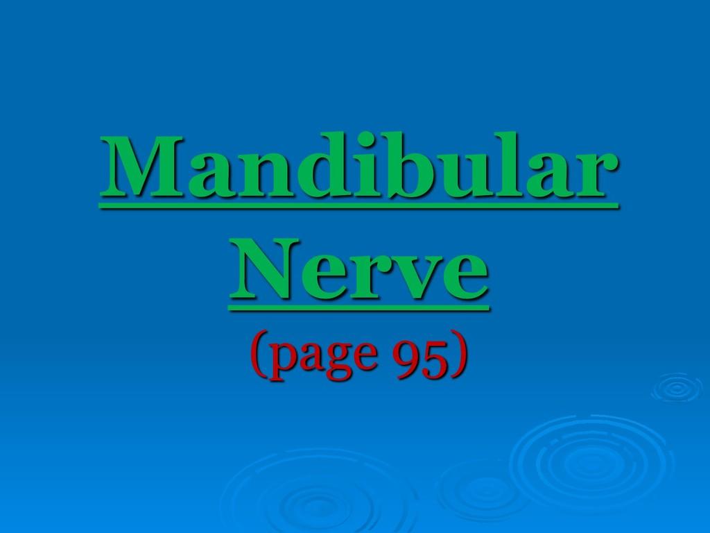 Mandibular Nerve (page 95)