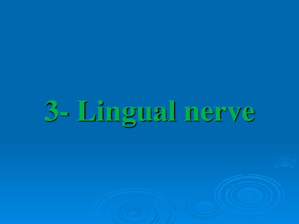 3- Lingual nerve