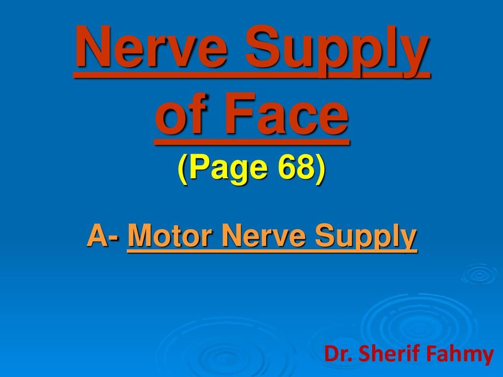 Nerve Supply of Face (Page 68) A- Motor Nerve S...