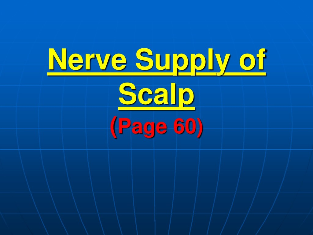 Nerve Supply of Scalp (Page 60)
