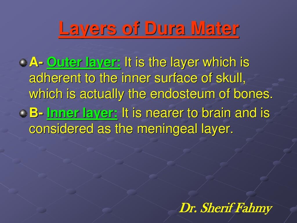 Layers of Dura Mater A- Outer layer: It is the ...