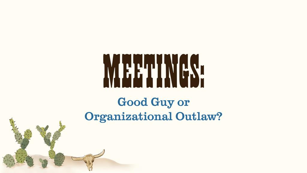 MEETINGS: Good Guy or Organizational Outlaw?
