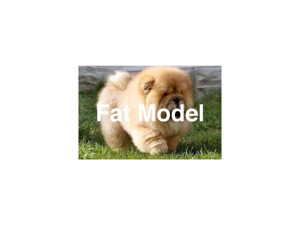Fat Model