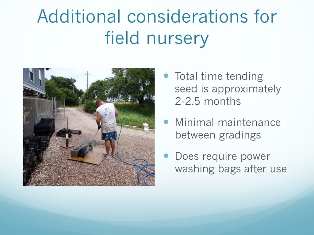 Additional considerations for field nursery — T...