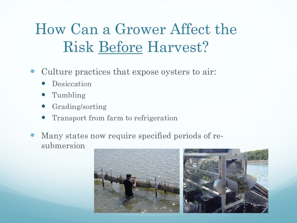 How Can a Grower Affect the Risk Before Harvest...