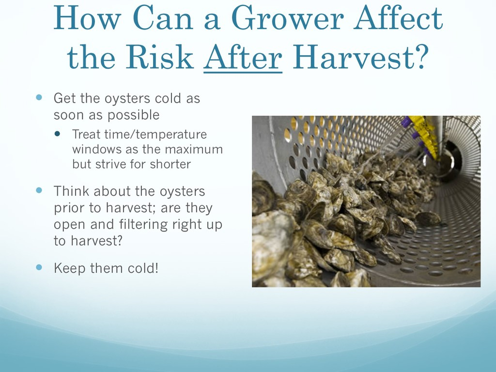 How Can a Grower Affect the Risk After Harvest?...