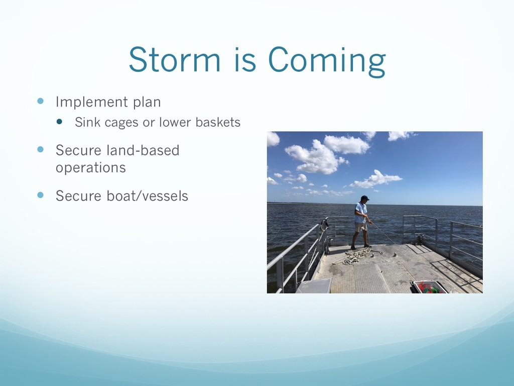 Storm is Coming — Implement plan — Sink cages o...