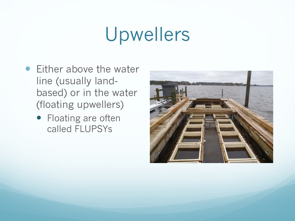 Upwellers — Either above the water line (usuall...