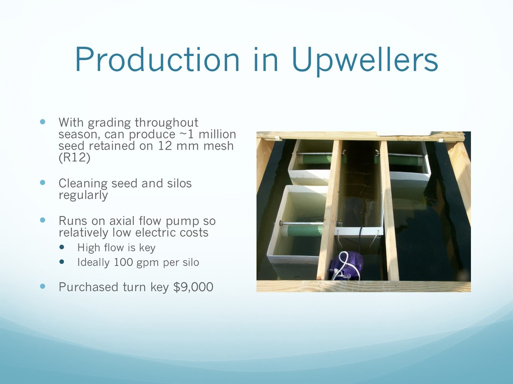 Production in Upwellers — With grading througho...
