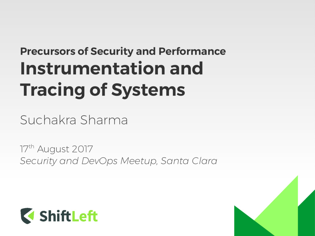 Precursors of Security and Performance Instrume...