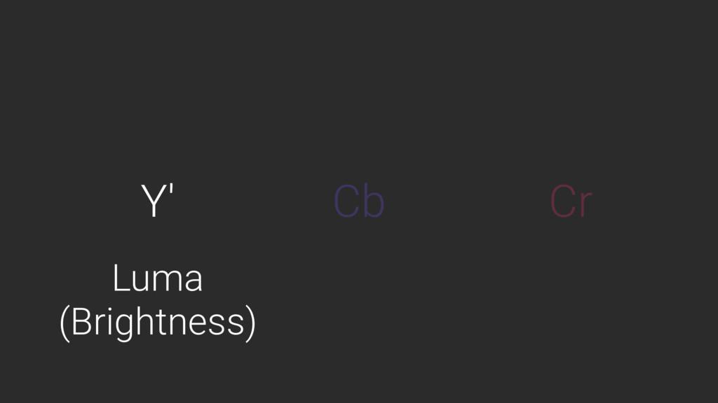 Y' Cb Cr Luma (Brightness)