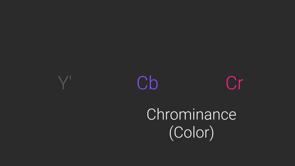 Y' Cb Cr Chrominance (Color)