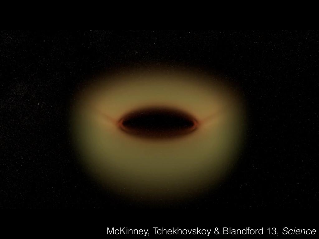 McKinney, Tchekhovskoy & Blandford 13, Science