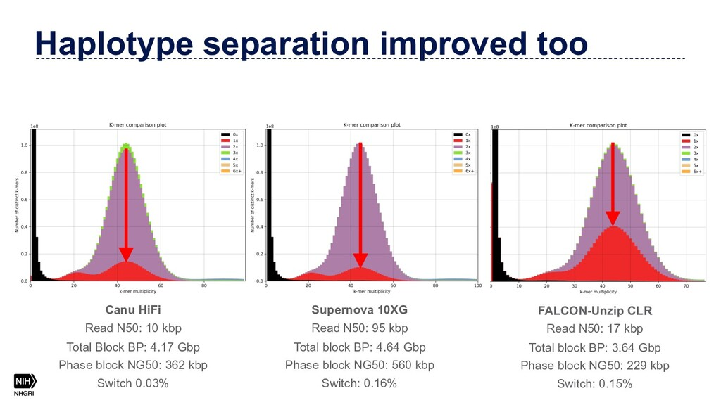 Haplotype separation improved too Canu HiFi Rea...