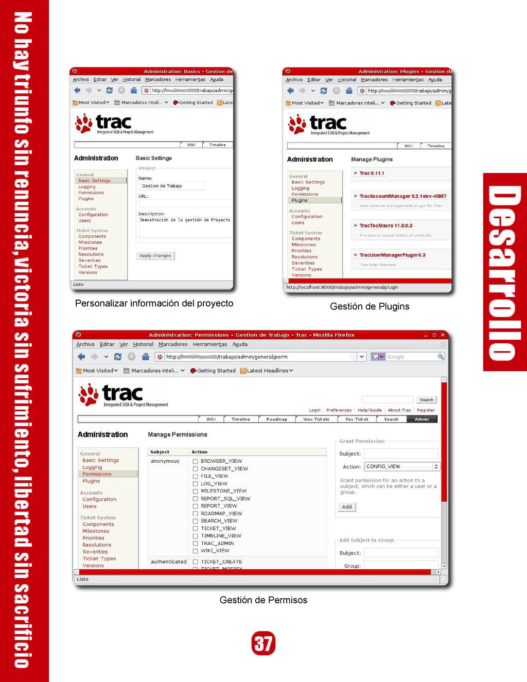 Personalizar información del proyecto Gestión d...