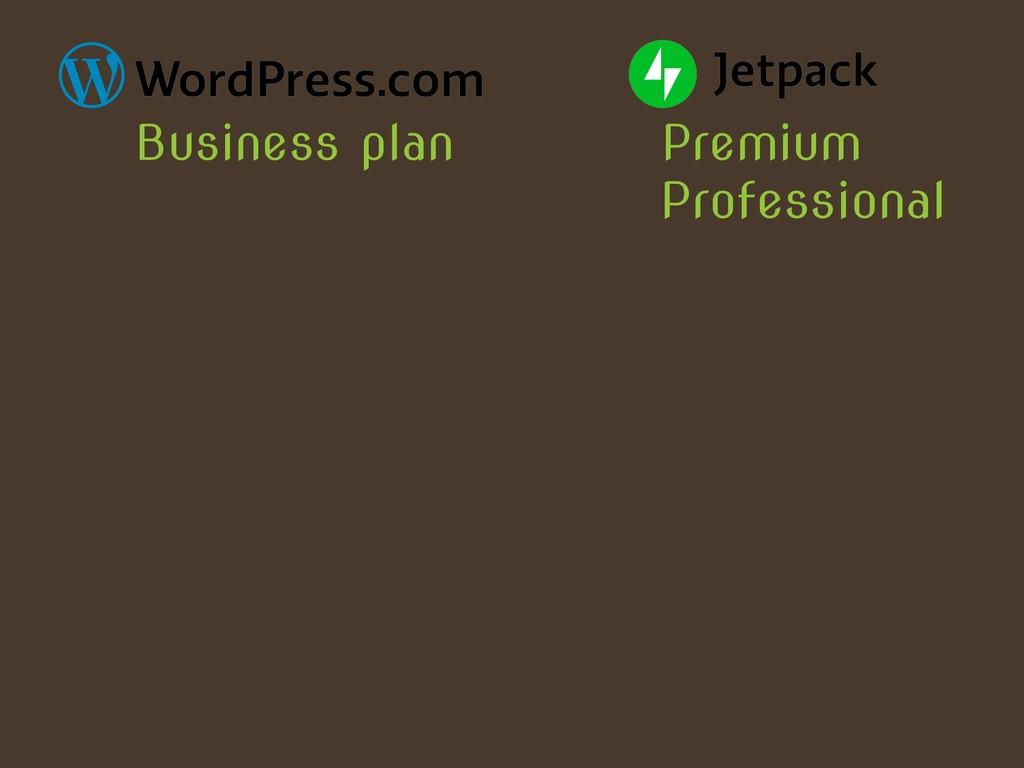 Premium Business plan Professional