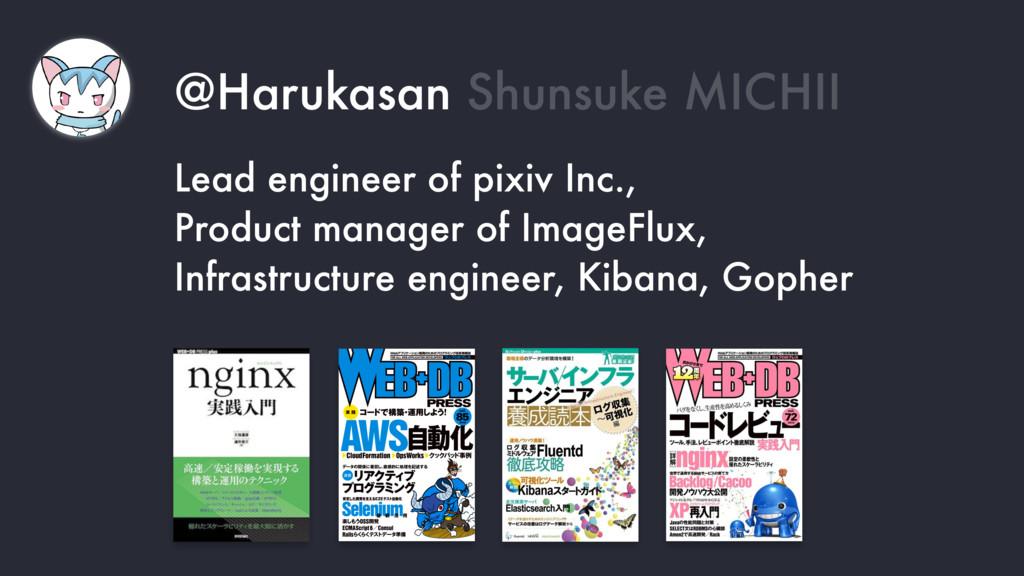 @Harukasan Shunsuke MICHII Lead engineer of pix...
