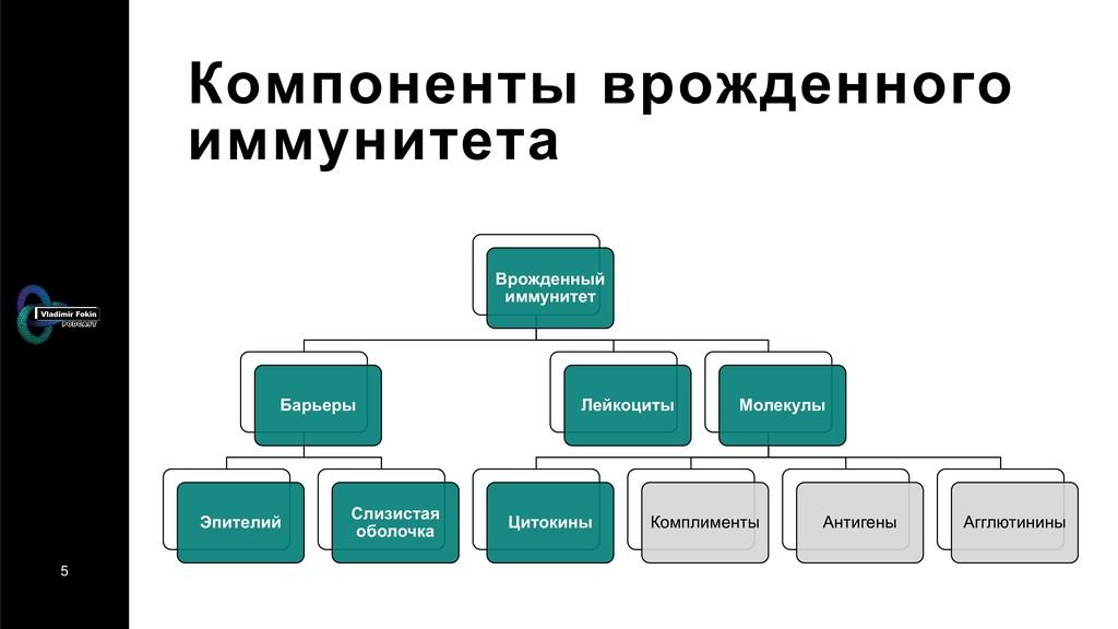 5 Компоненты врожденного иммунитета Врожденный ...