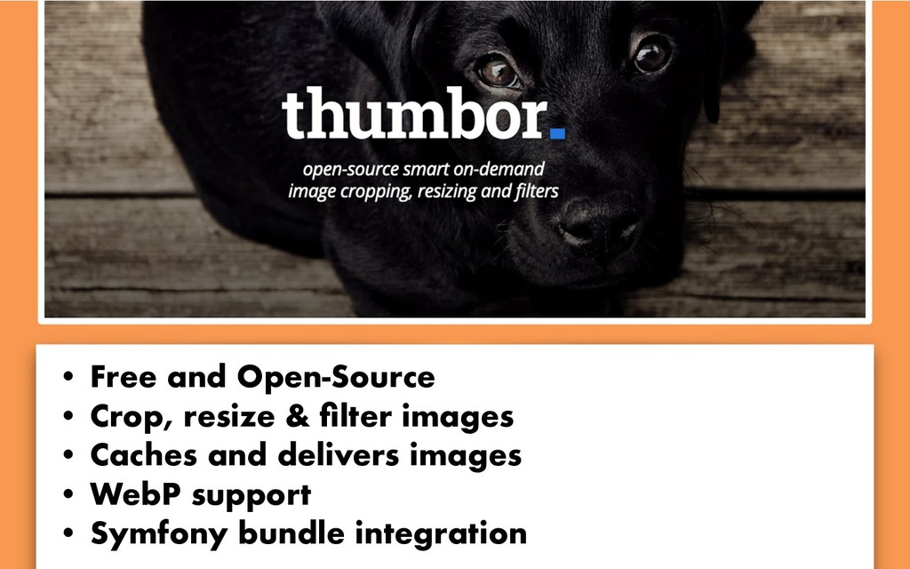 • Free and Open-Source • Crop, resize & filter i...