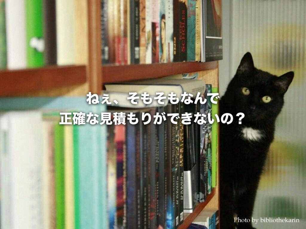 Ͷ͐ɺͦͦͳΜͰ ਖ਼֬ͳݟੵΓ͕Ͱ͖ͳ͍ͷʁ Photo by bibliotheka...