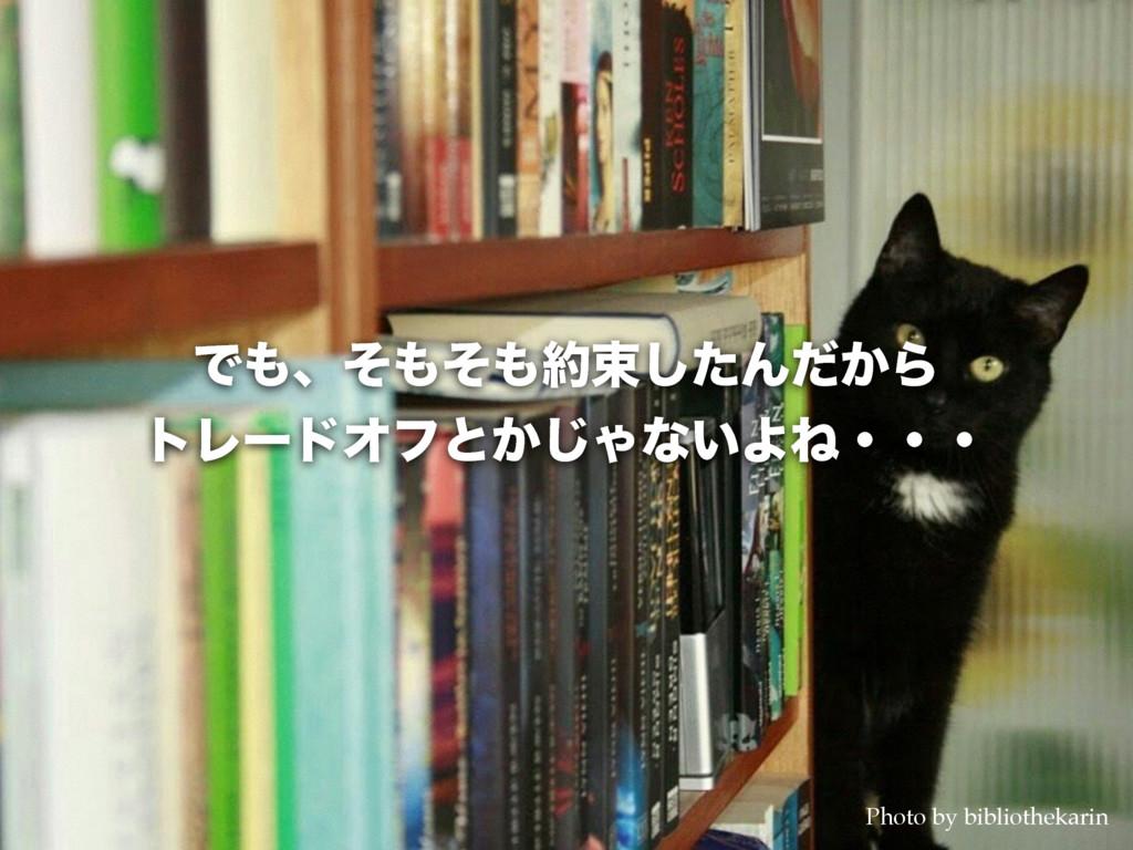 Ͱɺͦͦଋͨ͠Μ͔ͩΒ τϨʔυΦϑͱ͔͡Όͳ͍ΑͶɾɾɾ Photo by bib...