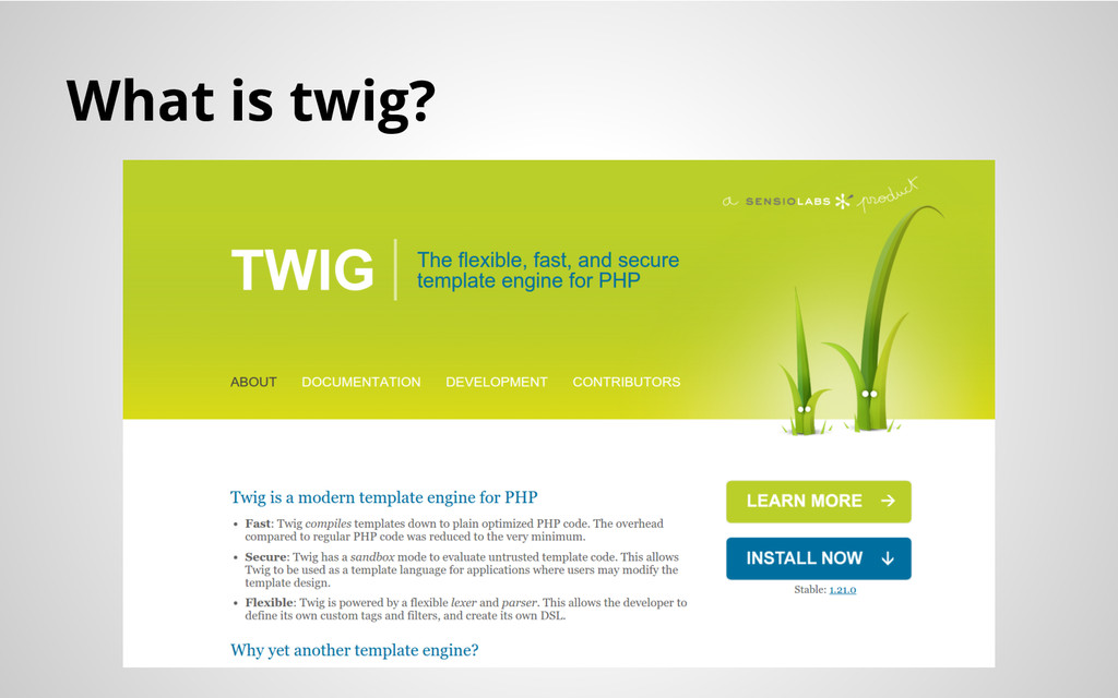 What is twig?