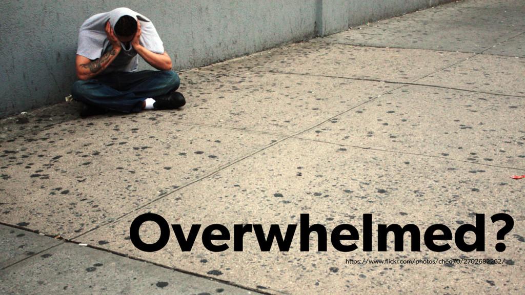 Overwhelmed? https://www.flickr.com/photos/cheo7...