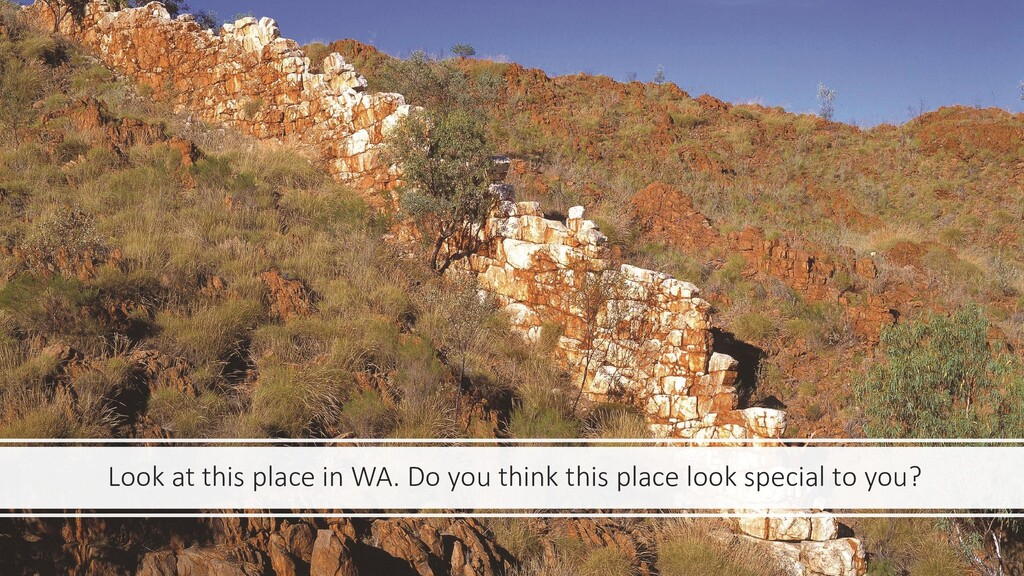 Look at this place in WA. Do you think this pla...