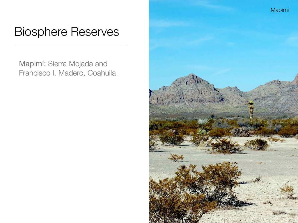 Biosphere Reserves Mapimí: Sierra Mojada and Fr...