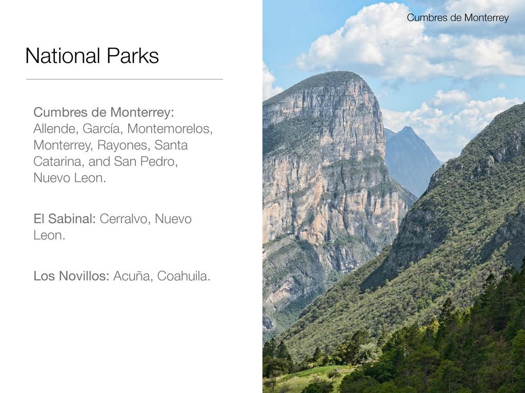 National Parks Cumbres de Monterrey: Allende, G...