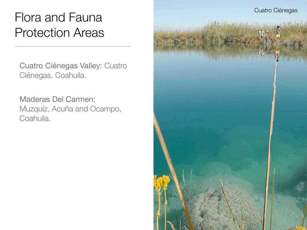 Flora and Fauna Protection Areas Cuatro Ciénega...