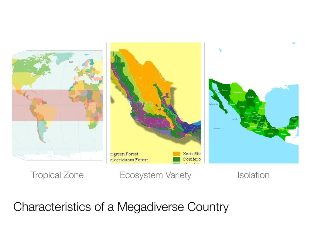 Characteristics of a Megadiverse Country Tropic...