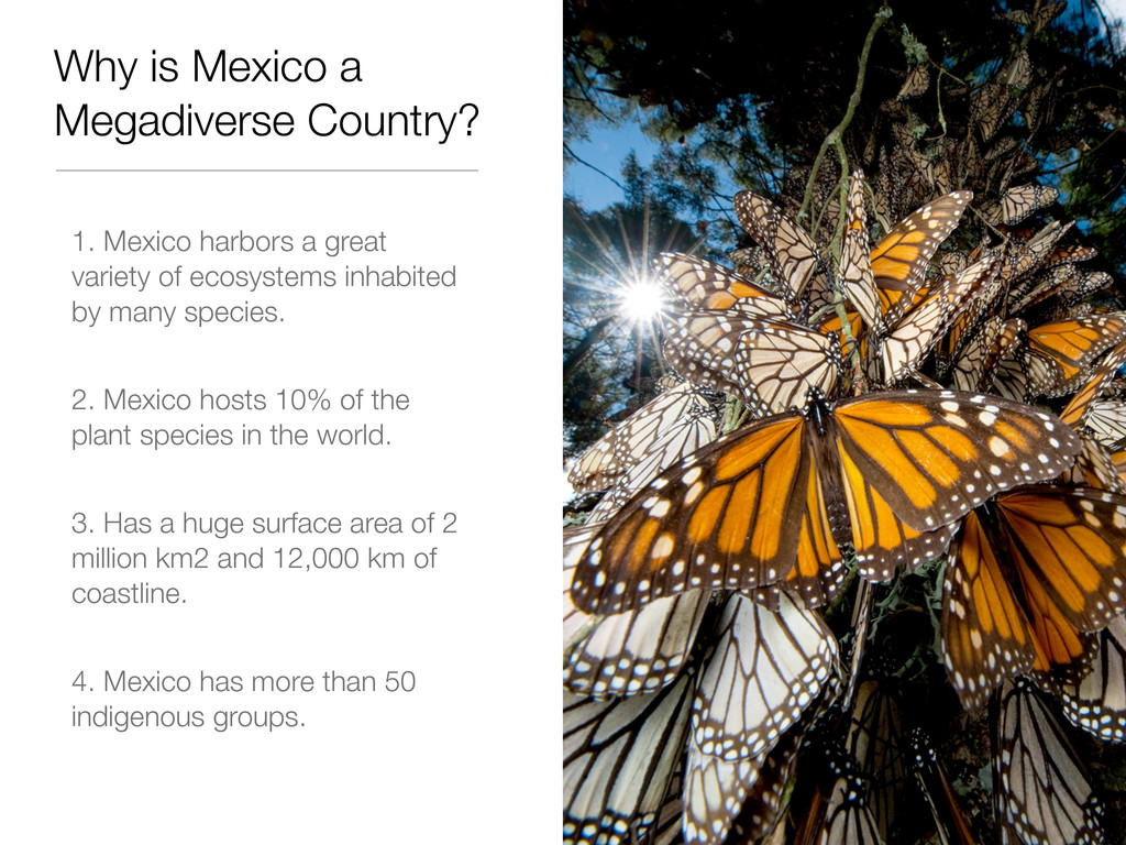 Why is Mexico a Megadiverse Country? 1. Mexico ...