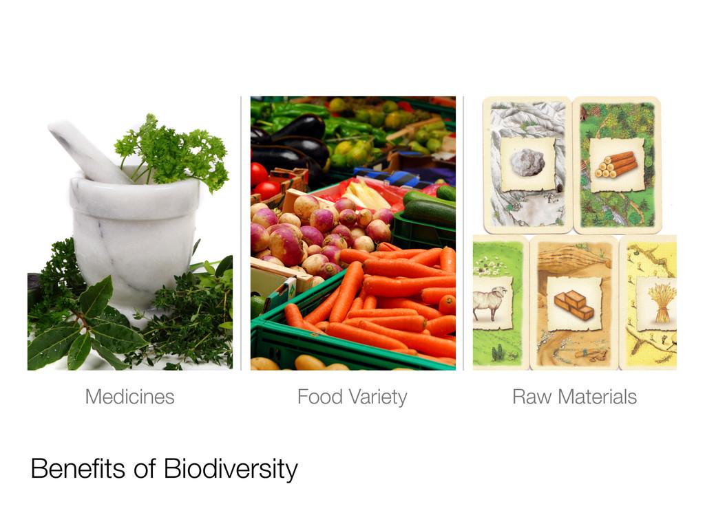 Medicines Food Variety Benefits of Biodiversity ...
