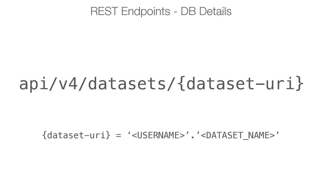 REST Endpoints - DB Details api/v4/datasets/{da...