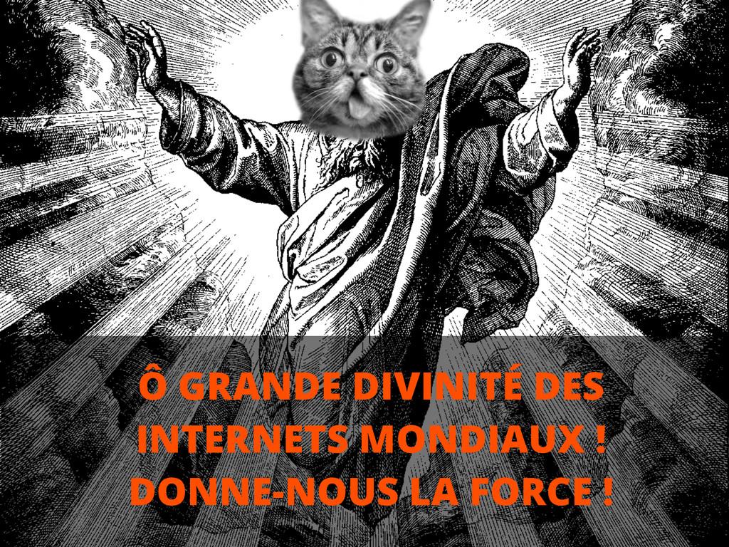 Ô GRANDE DIVINITÉ DES INTERNETS MONDIAUX ! DONN...