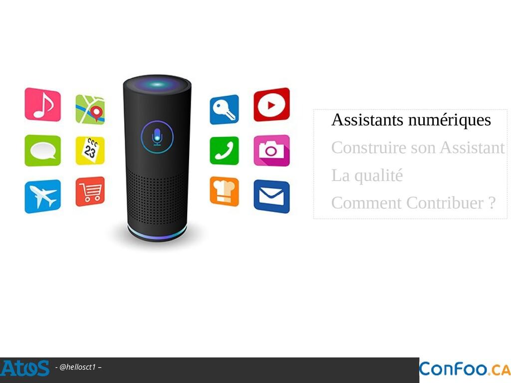 - @hellosct1 – Assistants numériques Construire...