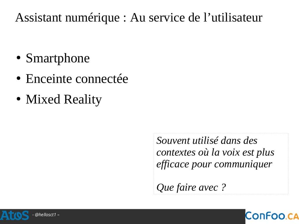 - @hellosct1 – Assistant numérique : Au service...