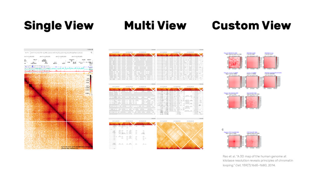 "Single View Multi View Custom View Rao et al. ""..."